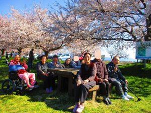 桜並木と菜の花を見に!福島潟へGO!
