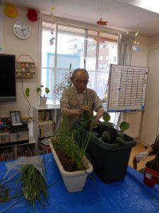 浦山菜園はじめました!