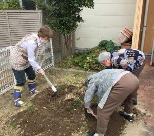 🍠畑の芋掘りを行いました🍠