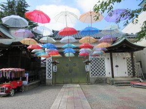 傘がいっぱい!
